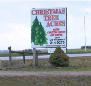 Christmas Tree Acres Sign